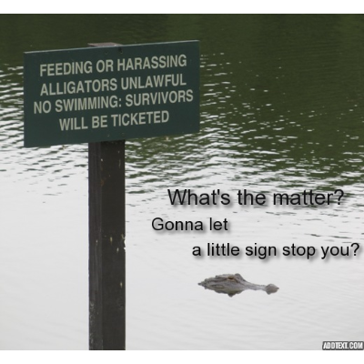 Alligator w sign ticketing survivors w text