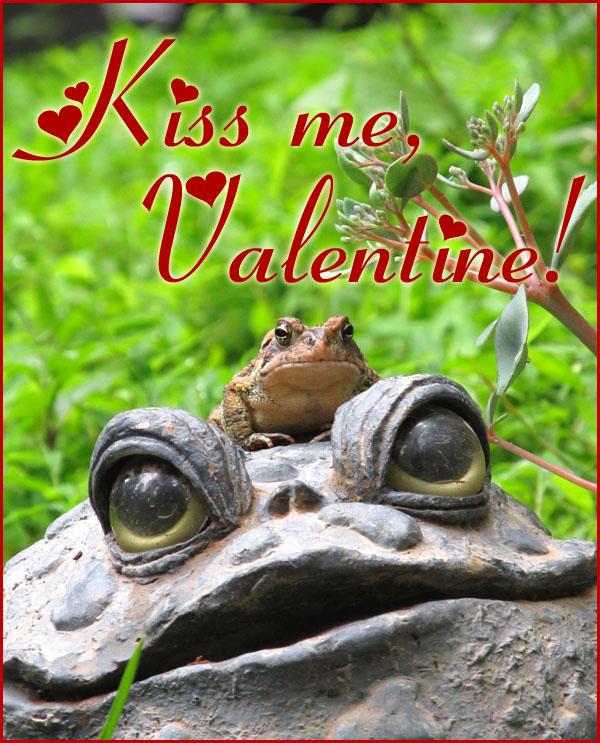 Valentine-toad