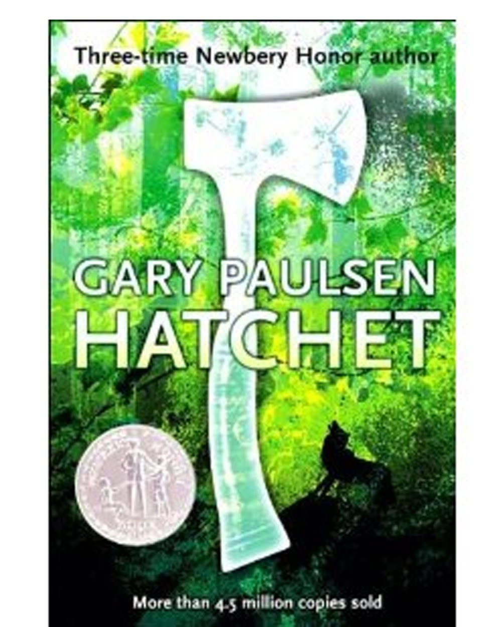 the story of brian robeson in gary paulsens hatchet Hatchet is an engrossing realistic fiction novel written by gary paulsen the story  focuses on thirteen year old brian robeson, a son of divorced.